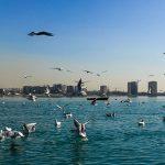 دریاچه چیتگر تهران کجاست|اجاره خونه|آدرس به مترو