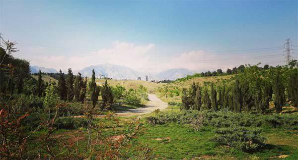 پارک پردیسان تهران کجاست| آدرس دقیق پارک جنگلی پردیسان